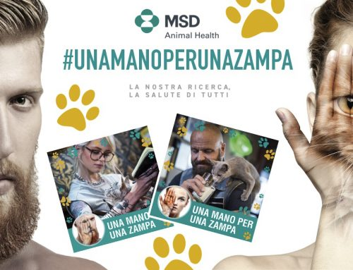 MSD Animal Health CAMPAGNA CHARITY
