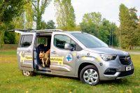 cane felice che salta fuori dall'auto opel combo pet lover edition